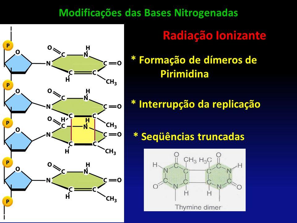 Radiação Ionizante * Formação de dímeros de Pirimidina * Interrupção da replicação * Seqüências truncadas Modificações das Bases Nitrogenadas