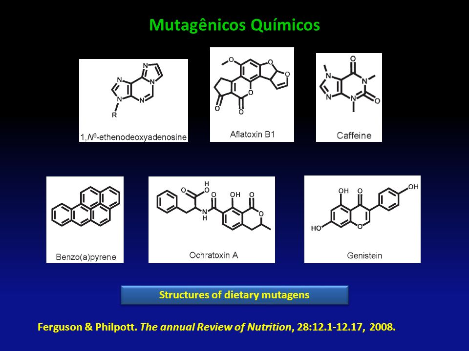 Mutagênicos Químicos Ferguson & Philpott. The annual Review of Nutrition, 28:12.1-12.17, 2008. Structures of dietary mutagens