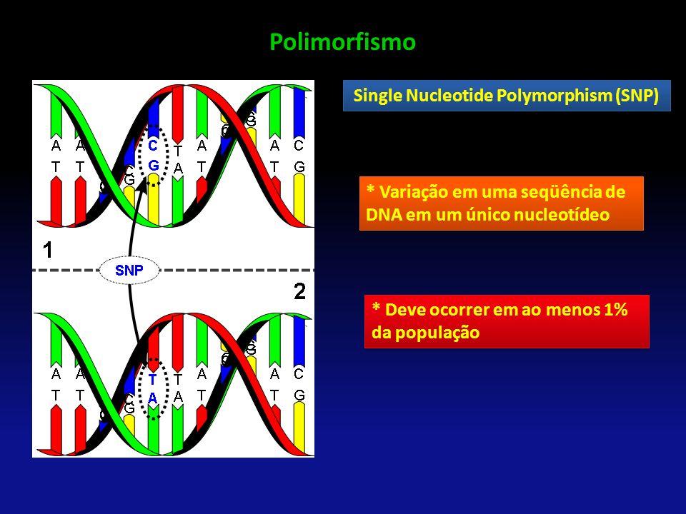 Polimorfismo Single Nucleotide Polymorphism (SNP) * Variação em uma seqüência de DNA em um único nucleotídeo * Deve ocorrer em ao menos 1% da populaçã