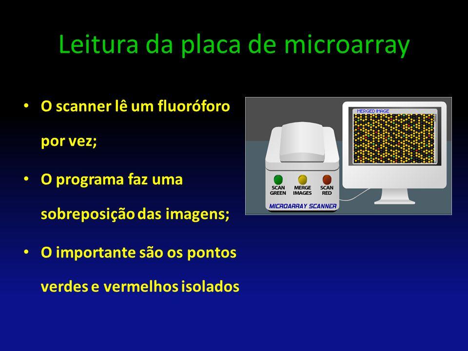 Leitura da placa de microarray O scanner lê um fluoróforo por vez; O programa faz uma sobreposição das imagens; O importante são os pontos verdes e ve