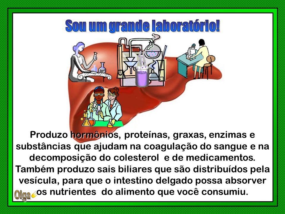 Conheça algumas de minhas funções bioquímicas, indispensáveis aos processos de digestão, nutrição e preservação do seu corpo!