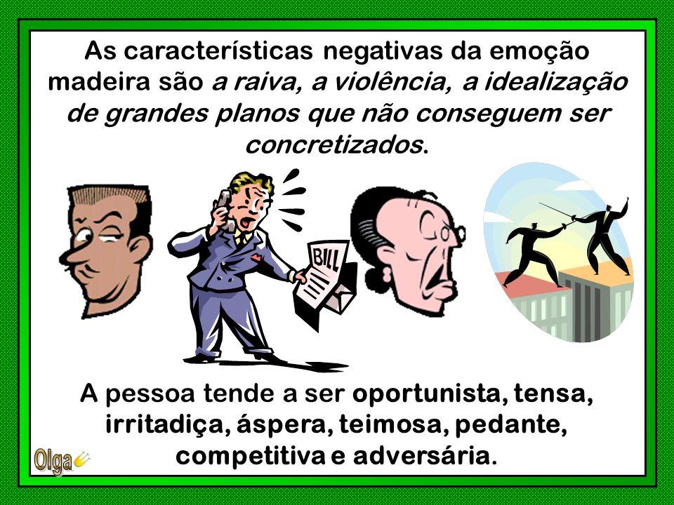 A qualidade positiva da emoção na Madeira é a bondade temperada com inteligência e lucidez.