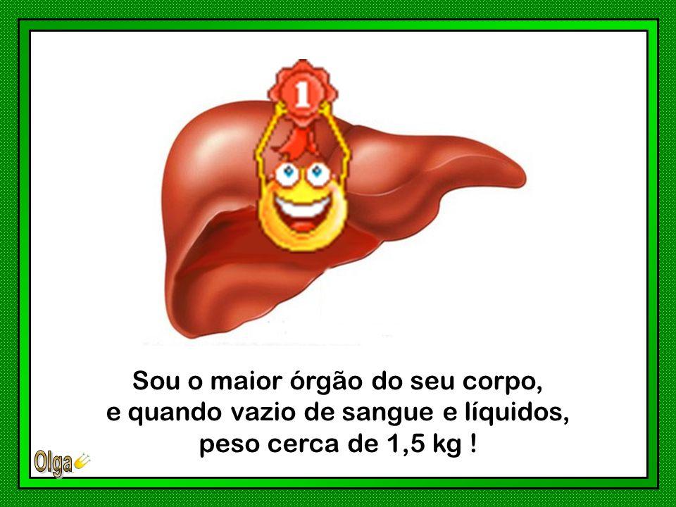 Sou o maior órgão do seu corpo, e quando vazio de sangue e líquidos, peso cerca de 1,5 kg !