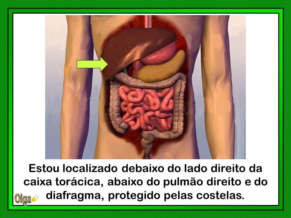 Cuide bem de sua alimentação.Não abuse dos alimentos gordurosos.