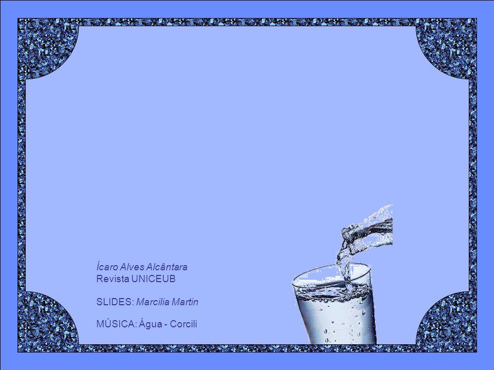 Uma descida de apenas 2% de água no corpo pode causar perda momentânea de memória, dificultades com os cálculos básicos e problemas de focalização da