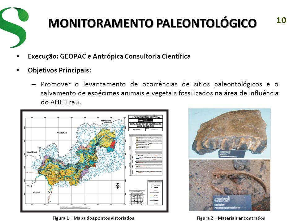 10 MONITORAMENTO PALEONTOLÓGICO Execução: GEOPAC e Antrópica Consultoria Científica Objetivos Principais: – Promover o levantamento de ocorrências de