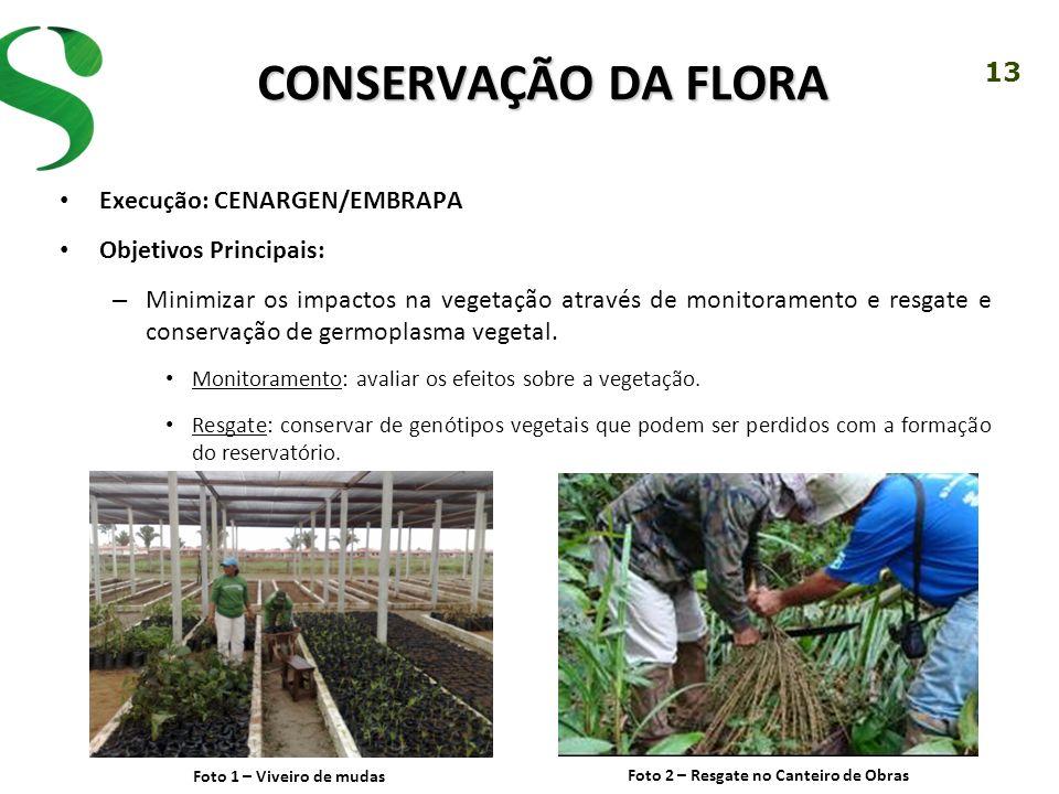 13 CONSERVAÇÃO DA FLORA Execução: CENARGEN/EMBRAPA Objetivos Principais: – Minimizar os impactos na vegetação através de monitoramento e resgate e con