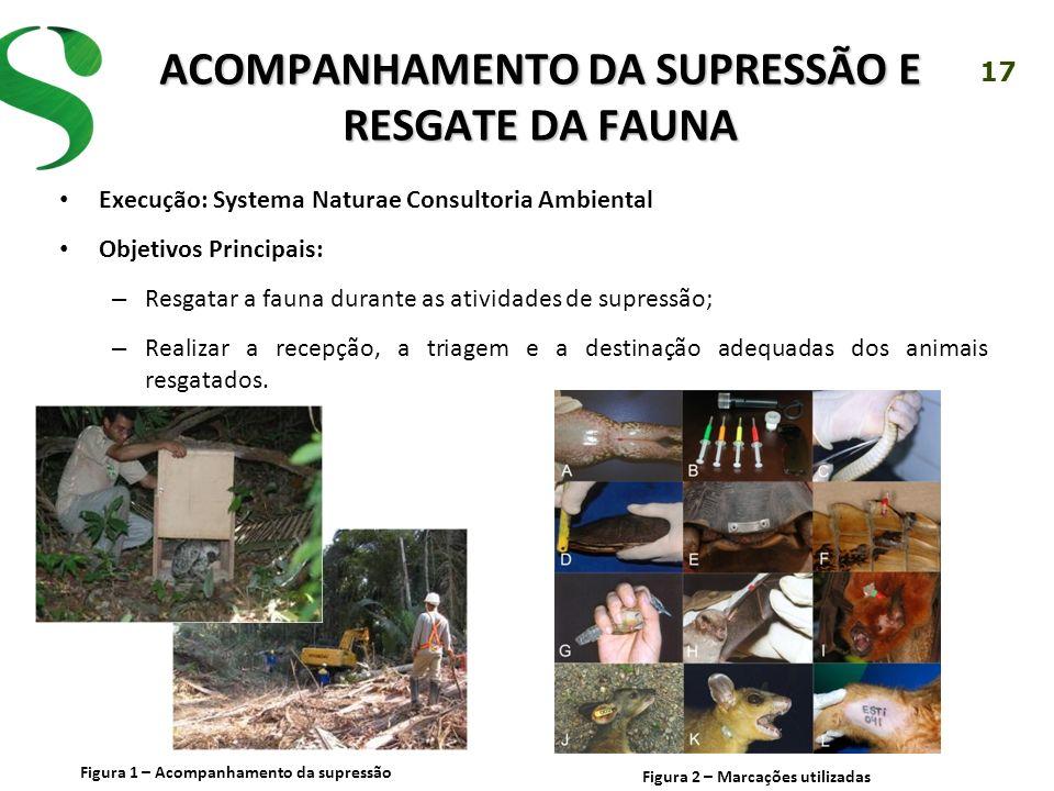 17 ACOMPANHAMENTO DA SUPRESSÃO E RESGATE DA FAUNA Execução: Systema Naturae Consultoria Ambiental Objetivos Principais: – Resgatar a fauna durante as