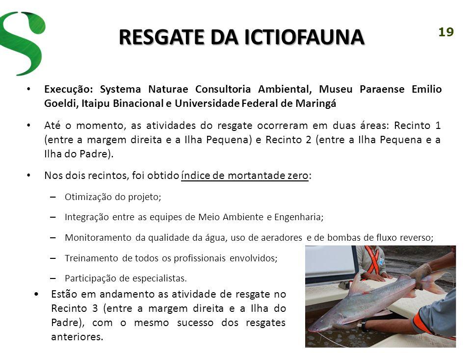 19 RESGATE DA ICTIOFAUNA Execução: Systema Naturae Consultoria Ambiental, Museu Paraense Emilio Goeldi, Itaipu Binacional e Universidade Federal de Ma