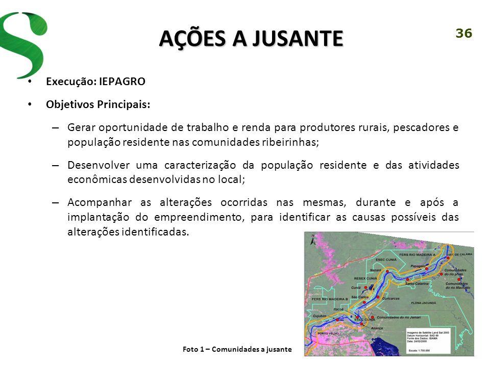 36 AÇÕES A JUSANTE Execução: IEPAGRO Objetivos Principais: – Gerar oportunidade de trabalho e renda para produtores rurais, pescadores e população res