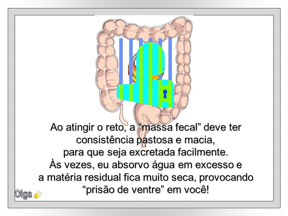 Os resíduos que eu não conseguir absorver – fibras, mucos, bactérias e células mortas do trato digestivo - serão armazenados no Cólon Sigmóide, digest