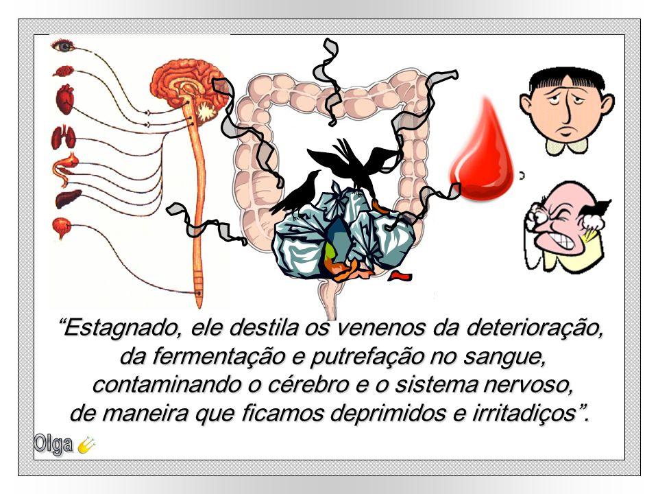 O Cólon é um sistema de esgoto, mas que, por O Cólon é um sistema de esgoto, mas que, por negligência, torna-se uma fossa sanitária. negligência, torn