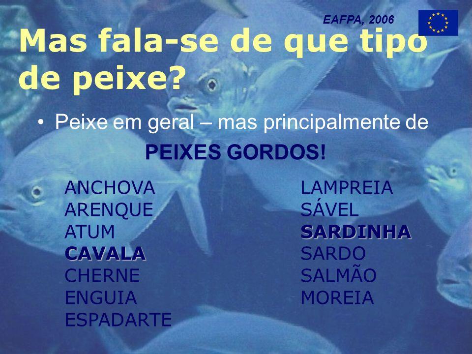 Mas fala-se de que tipo de peixe. EAFPA, 2006 Peixe em geral – mas principalmente de PEIXES GORDOS.