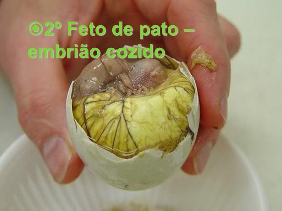 2º Feto de pato – 2º Feto de pato – embrião cozido