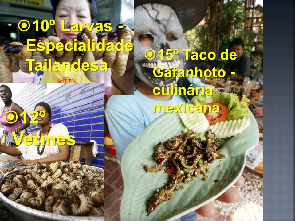 10º Larvas - Especialidade Tailandesa 10º Larvas - Especialidade Tailandesa 15º Taco de Gafanhoto - culinária mexicana 15º Taco de Gafanhoto - culinár