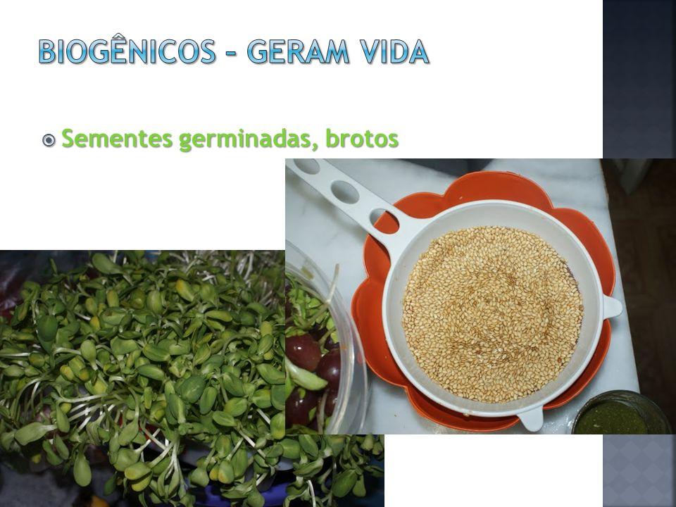 Sementes germinadas, brotos Sementes germinadas, brotos
