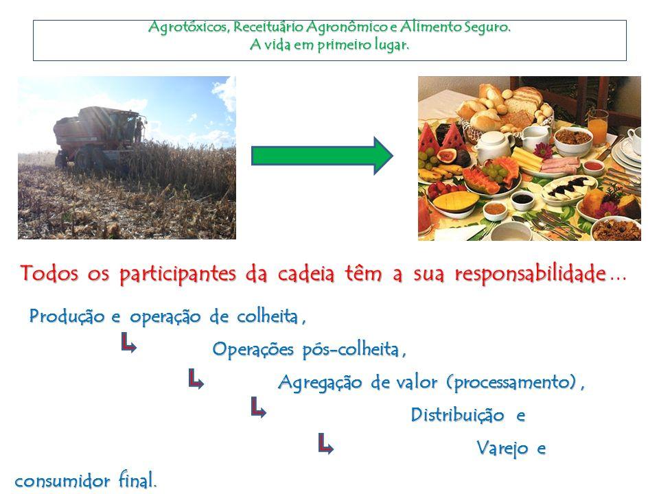 Agrotóxicos, Receituário Agronômico e Alimento Seguro. A vida em primeiro lugar. Todos os participantes da cadeia têm a sua responsabilidade Todos os