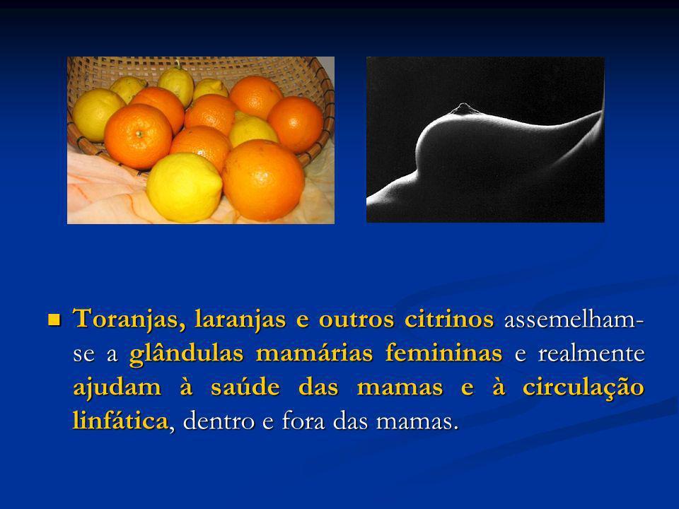 Toranjas, laranjas e outros citrinos assemelham- se a glândulas mamárias femininas e realmente ajudam à saúde das mamas e à circulação linfática, dent