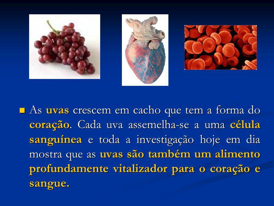 As uvas crescem em cacho que tem a forma do coração. Cada uva assemelha-se a uma célula sanguínea e toda a investigação hoje em dia mostra que as uvas