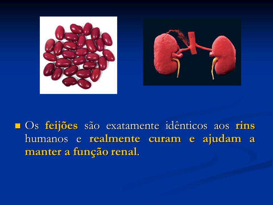 Os feijões são exatamente idênticos aos rins humanos e realmente curam e ajudam a manter a função renal. Os feijões são exatamente idênticos aos rins