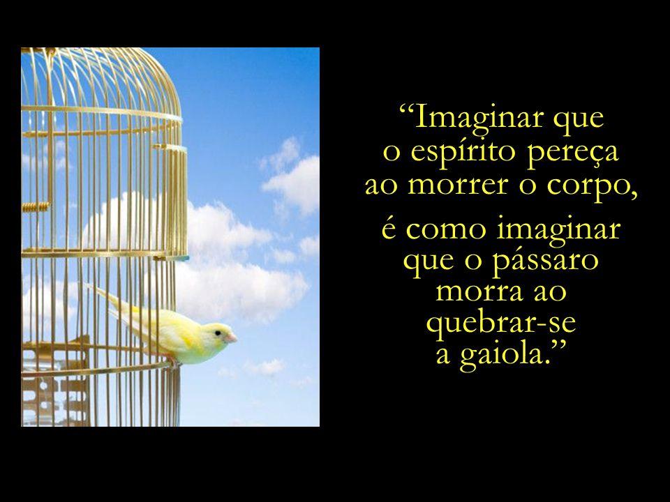 ...que compara o corpo físico a uma gaiola, e o espírito a uma ave que nela habita.