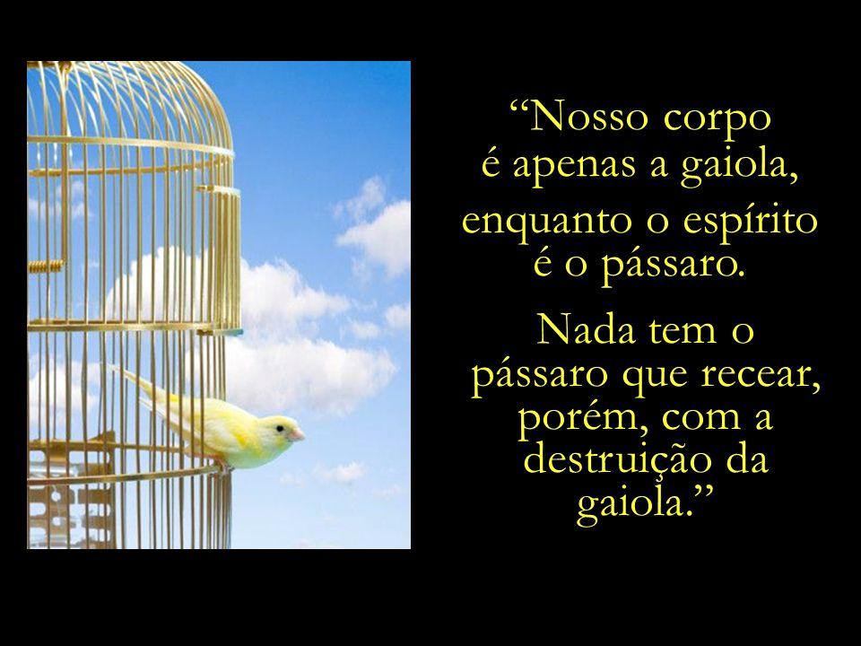 e o espírito a uma ave que nela habita. Imaginar que o espírito pereça ao morrer o corpo, é como imaginar que o pássaro morra ao quebrar-se a gaiola.