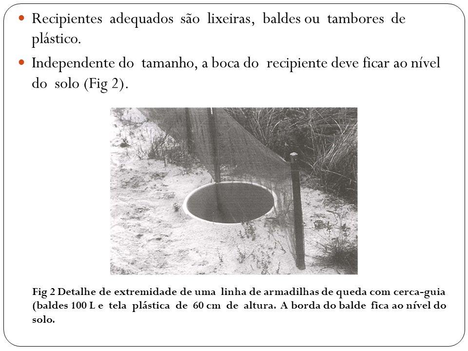 Recipientes adequados são lixeiras, baldes ou tambores de plástico. Independente do tamanho, a boca do recipiente deve ficar ao nível do solo (Fig 2).