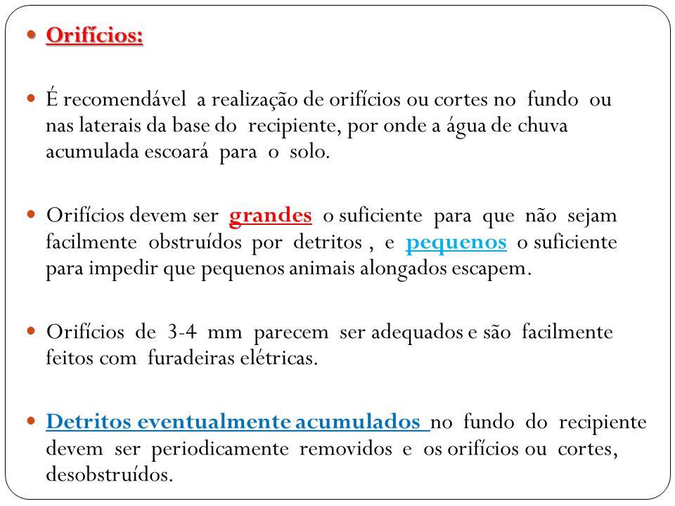 Orifícios: Orifícios: É recomendável a realização de orifícios ou cortes no fundo ou nas laterais da base do recipiente, por onde a água de chuva acum