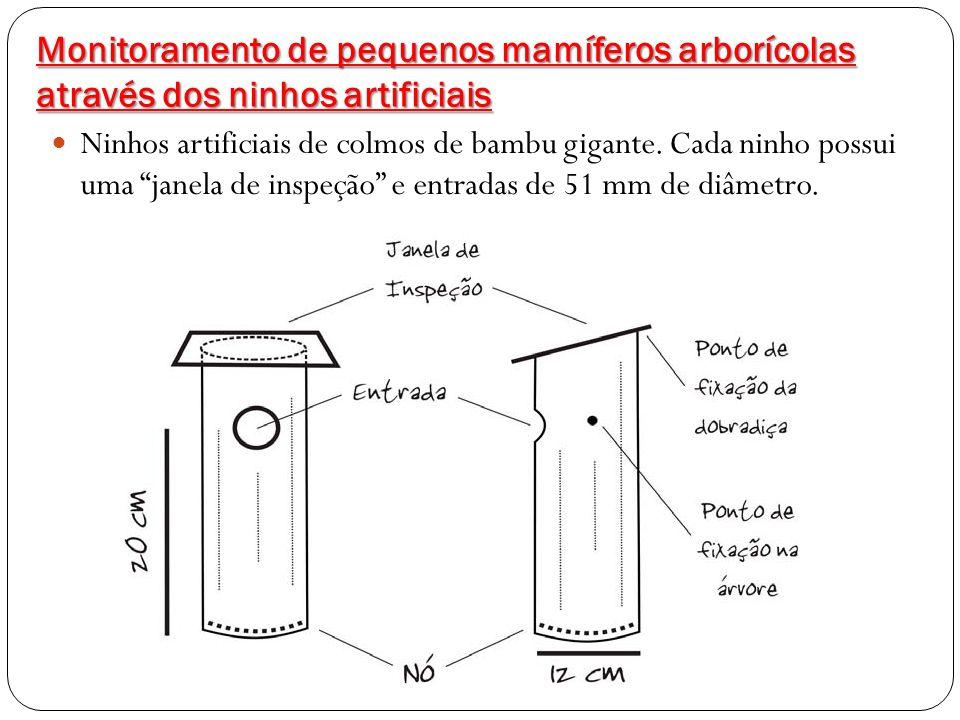 Monitoramento de pequenos mamíferos arborícolas através dos ninhos artificiais Ninhos artificiais de colmos de bambu gigante. Cada ninho possui uma ja