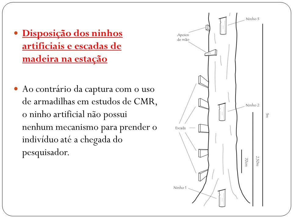 Disposição dos ninhos artificiais e escadas de madeira na estação Ao contrário da captura com o uso de armadilhas em estudos de CMR, o ninho artificia