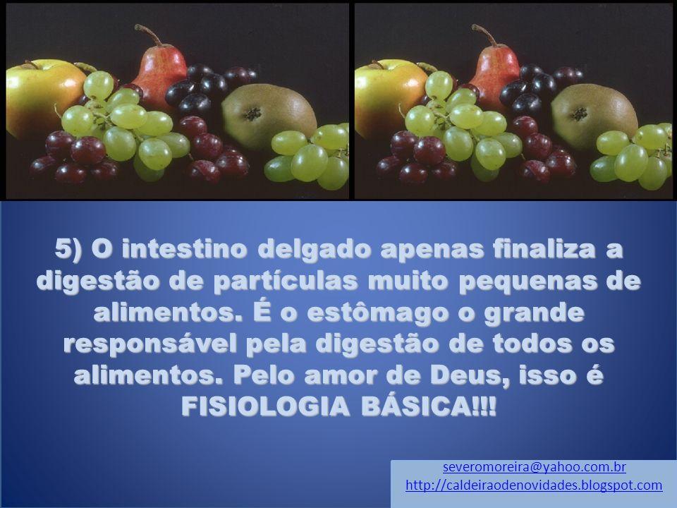 5) O intestino delgado apenas finaliza a digestão de partículas muito pequenas de alimentos.