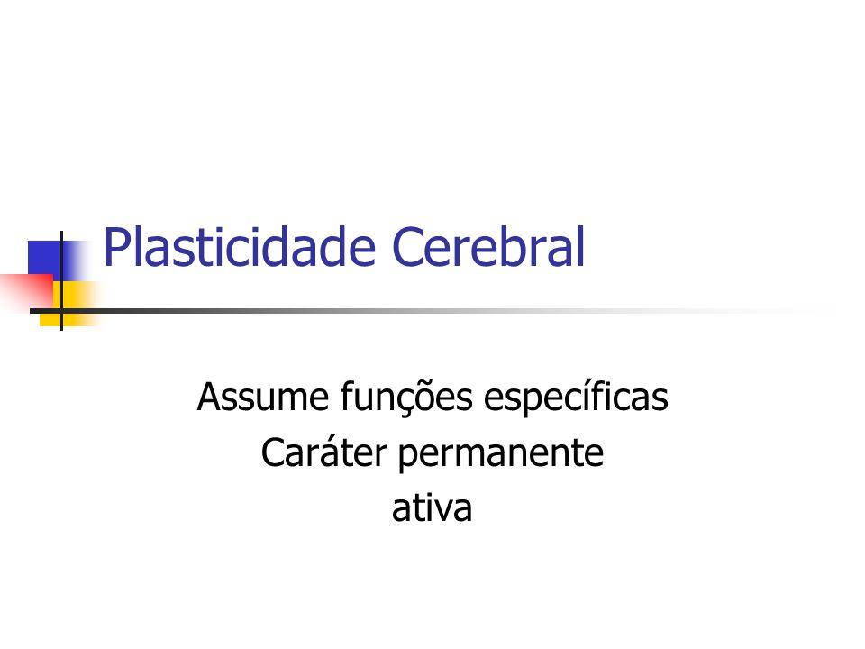 Plasticidade Cerebral Assume funções específicas Caráter permanente ativa