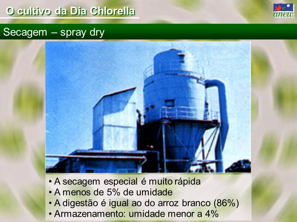 A secagem especial é muito rápida A menos de 5% de umidade A digestão é igual ao do arroz branco (86%) Armazenamento: umidade menor a 4% Secagem – spr