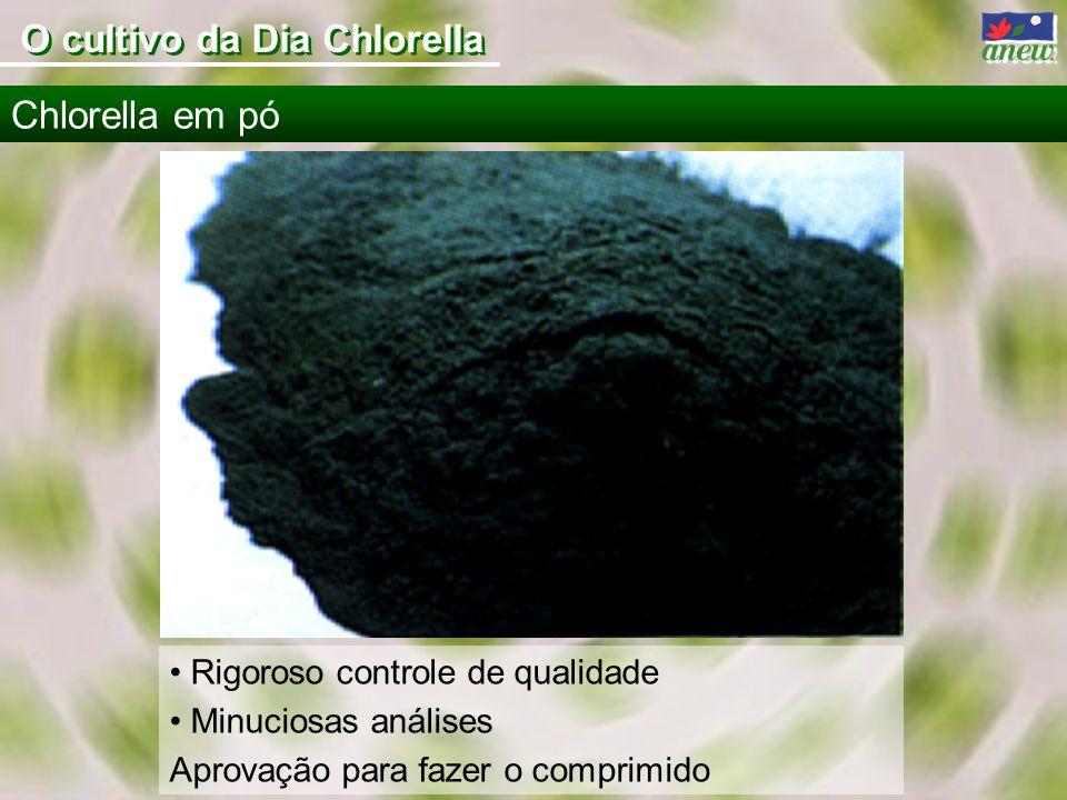 Rigoroso controle de qualidade Minuciosas análises Aprovação para fazer o comprimido Chlorella em pó O cultivo da Dia Chlorella