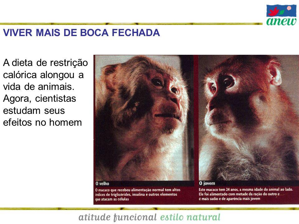 VIVER MAIS DE BOCA FECHADA A dieta de restrição calórica alongou a vida de animais. Agora, cientistas estudam seus efeitos no homem