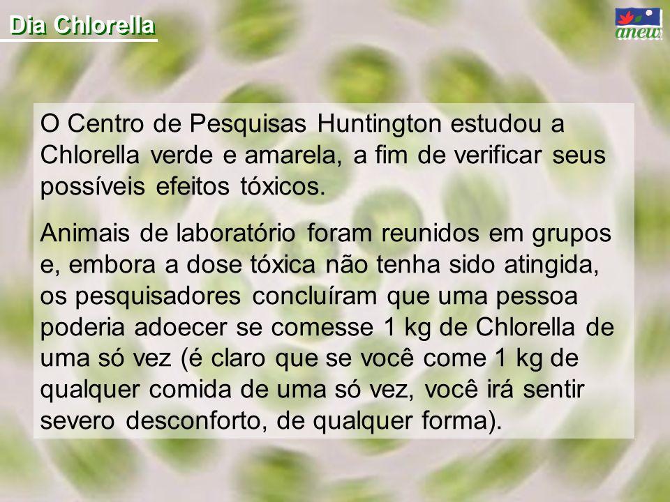 Dia Chlorella O Centro de Pesquisas Huntington estudou a Chlorella verde e amarela, a fim de verificar seus possíveis efeitos tóxicos. Animais de labo