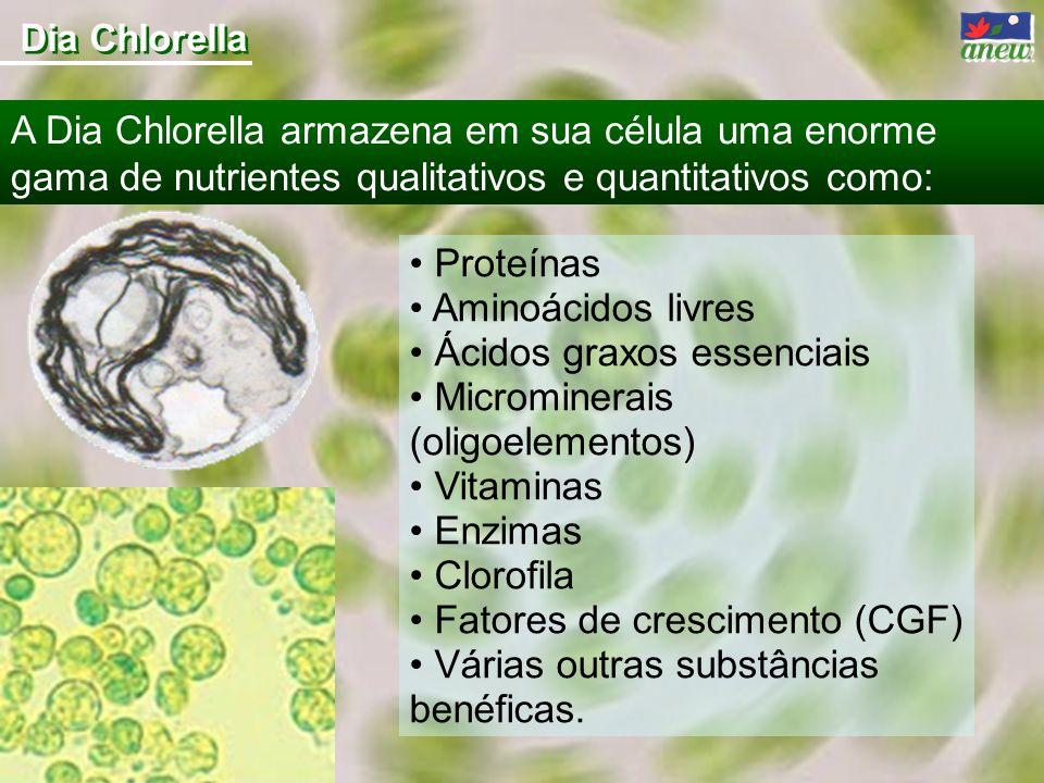 Proteínas Aminoácidos livres Ácidos graxos essenciais Microminerais (oligoelementos) Vitaminas Enzimas Clorofila Fatores de crescimento (CGF) Várias o