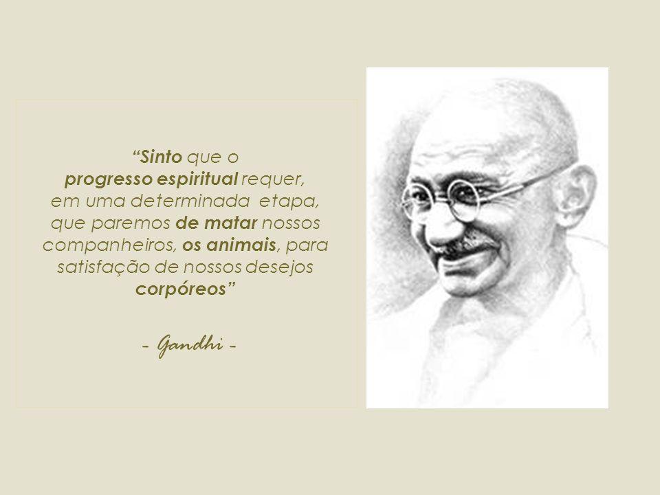 Quanto mais o homem se afasta do regime carnívoro, mais sábia é a sua mente Os animais são meus amigos.