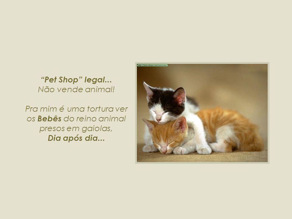 Pet Shop legal...Não vende animal.