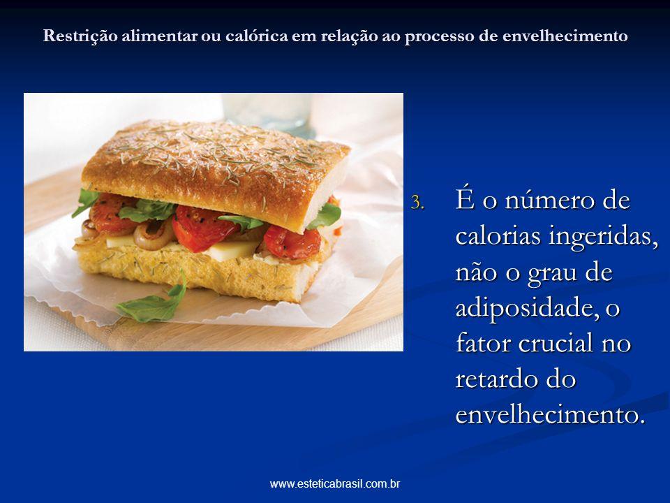 www.esteticabrasil.com.br Restrição alimentar ou calórica em relação ao processo de envelhecimento 3. É o número de calorias ingeridas, não o grau de