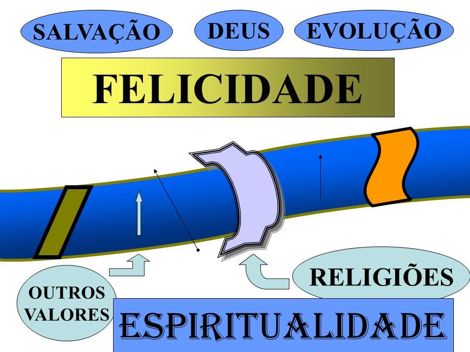 FELICIDADE SALVAÇÃO DEUSEVOLUÇÃO RELIGIÕES OUTROS VALORES ESPIRITUALIDADE