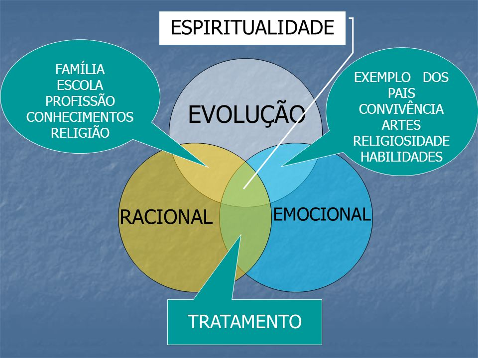 EVOLUÇÃO RACIONAL EMOCIONAL FAMÍLIA ESCOLA PROFISSÃO CONHECIMENTOS RELIGIÃO EXEMPLO DOS PAIS CONVIVÊNCIA ARTES RELIGIOSIDADE HABILIDADES TRATAMENTO ES