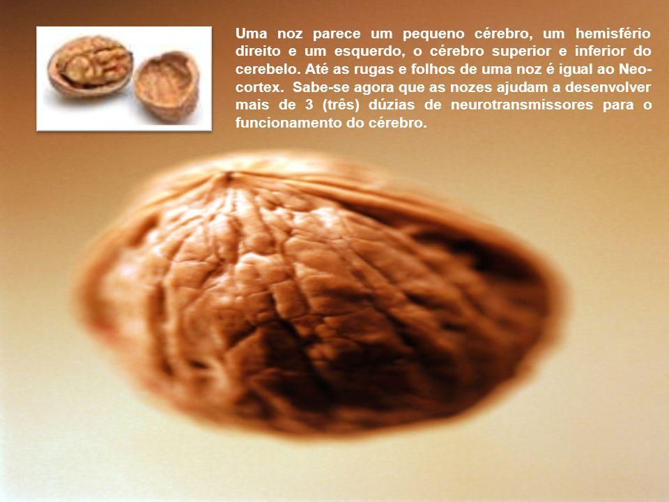 Uvas em cacho tem a forma de um coração. Cada uva é muito parecida com uma célula do sangue. E hoje a pesquisa mostra que as uvas são um alimento prof