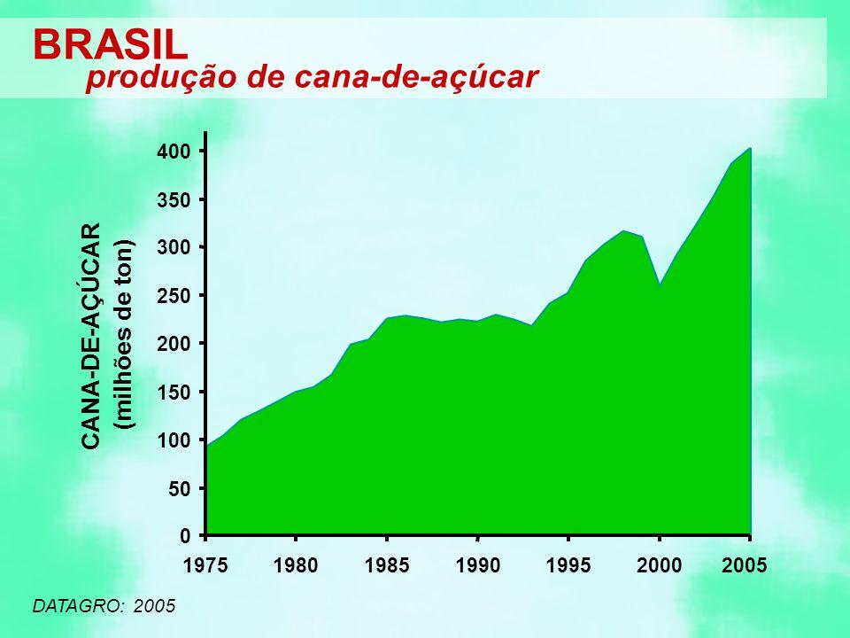 DATAGRO: 2005 BRASIL produção de cana-de-açúcar 0 50 100 150 200 250 300 350 400 1975198019851990199520002005 CANA-DE-AÇÚCAR (milhões de ton)