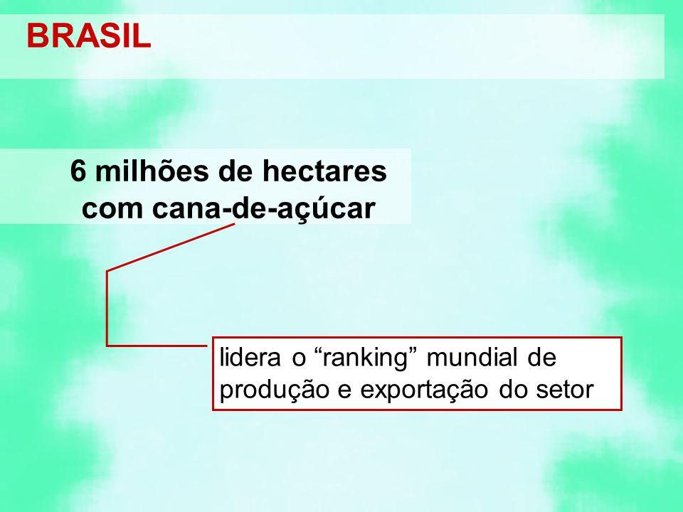 BRASIL 6 milhões de hectares com cana-de-açúcar lidera o ranking mundial de produção e exportação do setor