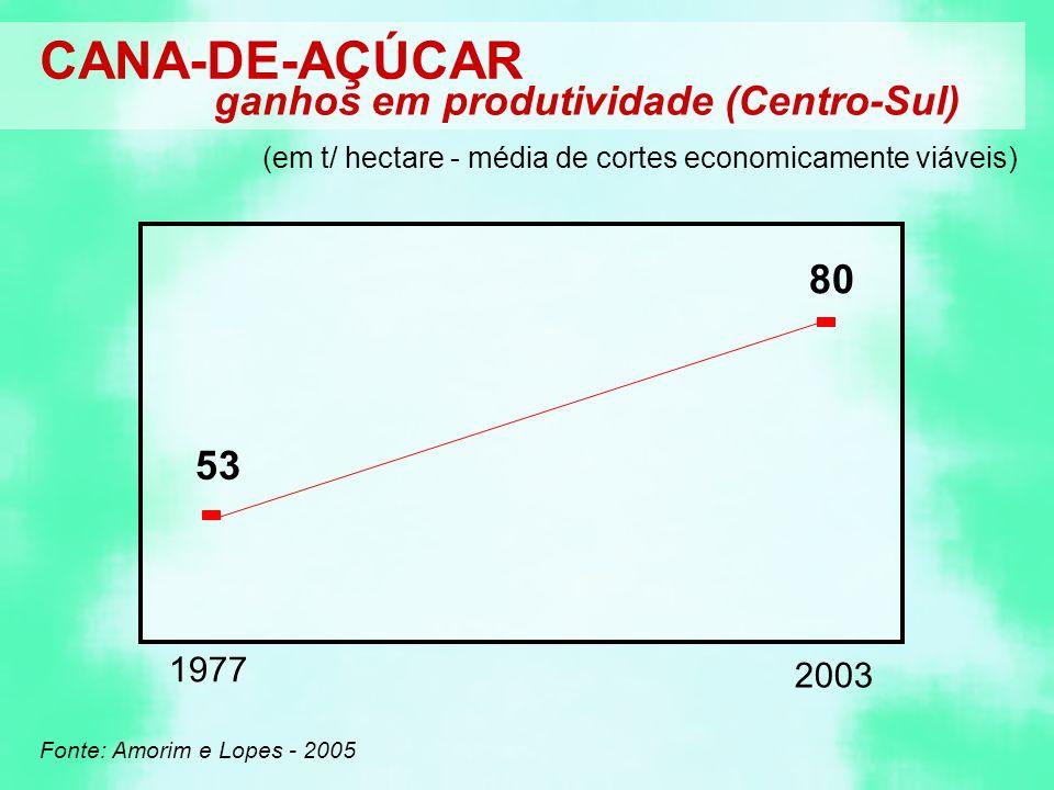 CANA-DE-AÇÚCAR ganhos em produtividade (Centro-Sul) Fonte: Amorim e Lopes - 2005 (em t/ hectare - média de cortes economicamente viáveis) 1977 53 2003 80