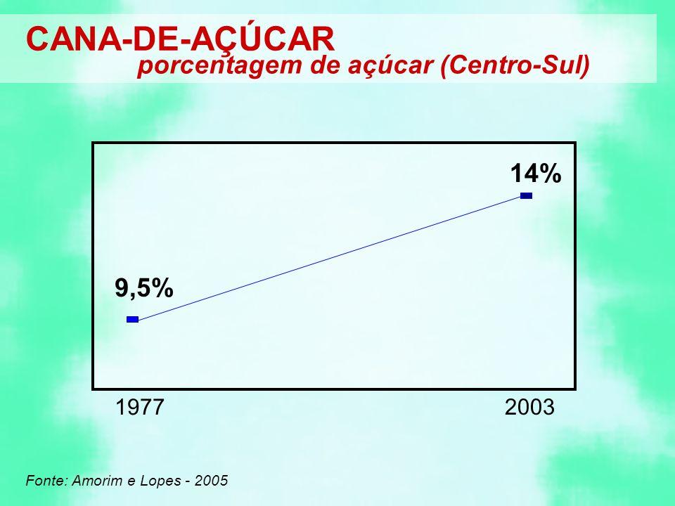CANA-DE-AÇÚCAR porcentagem de açúcar (Centro-Sul) Fonte: Amorim e Lopes - 2005 1977 9,5% 2003 14%