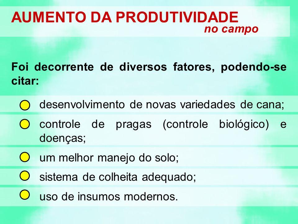 AUMENTO DA PRODUTIVIDADE no campo desenvolvimento de novas variedades de cana; controle de pragas (controle biológico) e doenças; um melhor manejo do