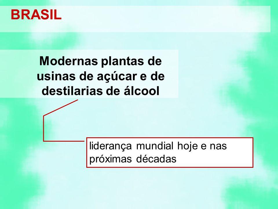 Modernas plantas de usinas de açúcar e de destilarias de álcool liderança mundial hoje e nas próximas décadas BRASIL
