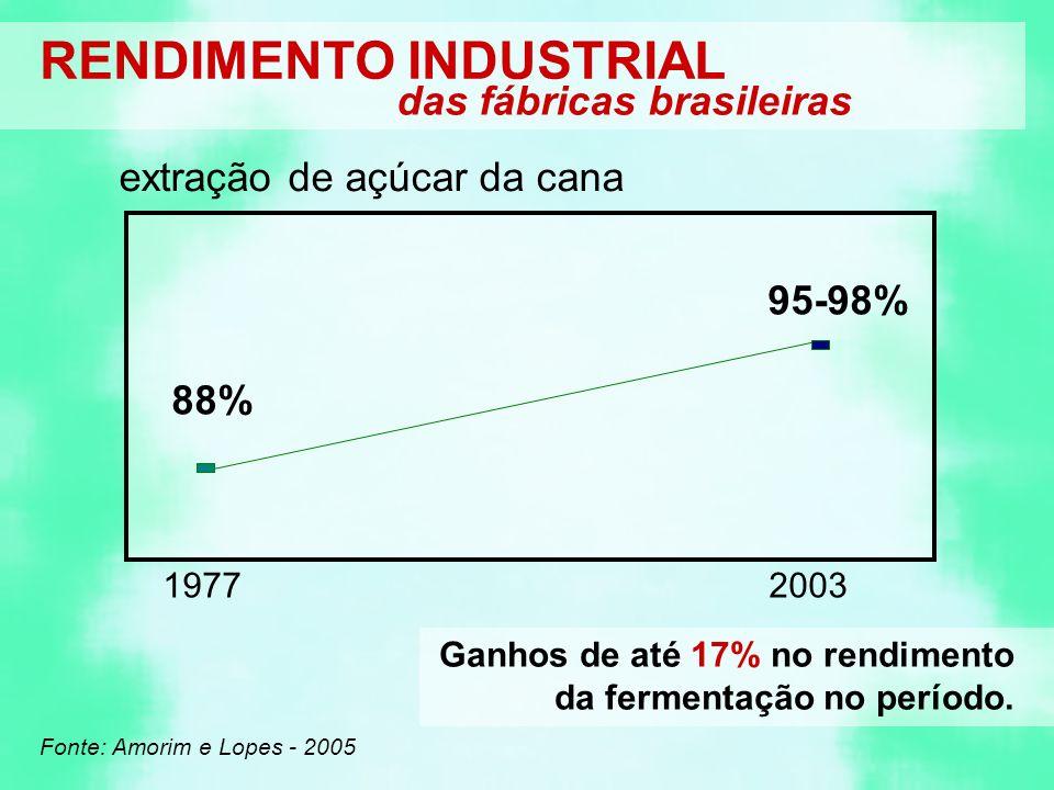 RENDIMENTO INDUSTRIAL das fábricas brasileiras extração de açúcar da cana 1977 Fonte: Amorim e Lopes - 2005 88% 2003 95-98% Ganhos de até 17% no rendimento da fermentação no período.